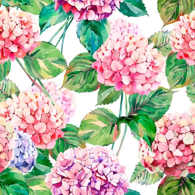 Blumenhortensieblumen mit grünem blattmuster Premium Vektoren