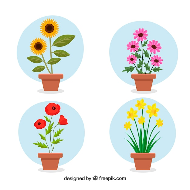 Blumentopfsammlung mit flachem design Kostenlosen Vektoren