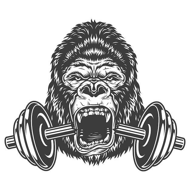 Bodybuilding-konzept mit gorilla Kostenlosen Vektoren