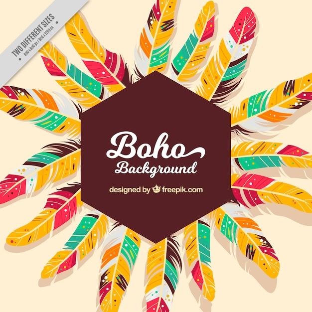 Boho hintergrund mit schönen bunten federn Kostenlosen Vektoren