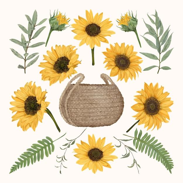 Boho strohkorb mit sonnenblumen und blättern Premium Vektoren
