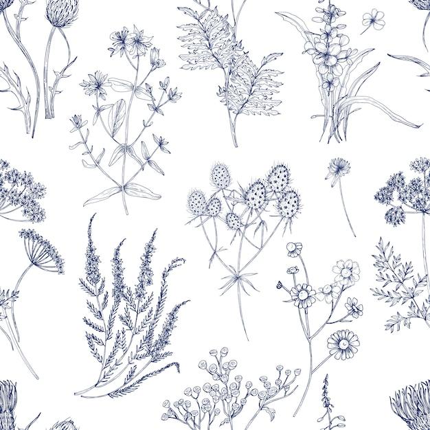 Botanisches nahtloses muster mit wiesenkräutern, blühenden pflanzen und blühenden wilden blumen hand gezeichnet mit blauen linien auf weißem hintergrund. natürliche illustration im vintage-stil für stoffdruck. Premium Vektoren