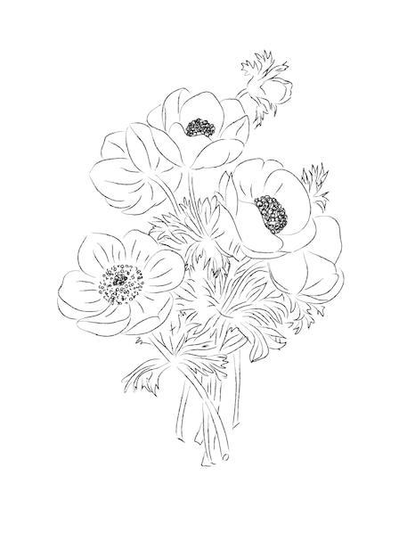 Bouquet von anemonen Premium Vektoren