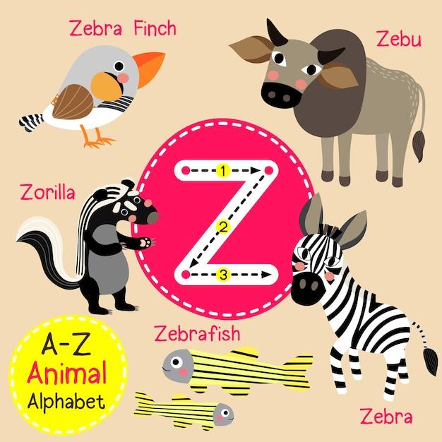 Buchstabe z zoo alphabet Premium Vektoren
