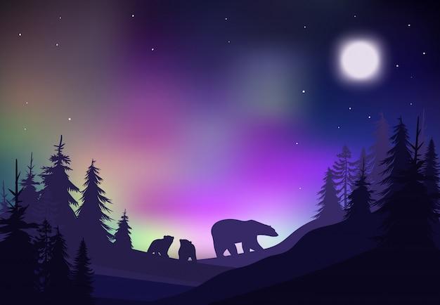 Bunte nacht-winterwald-landschaftsschablone Kostenlosen Vektoren