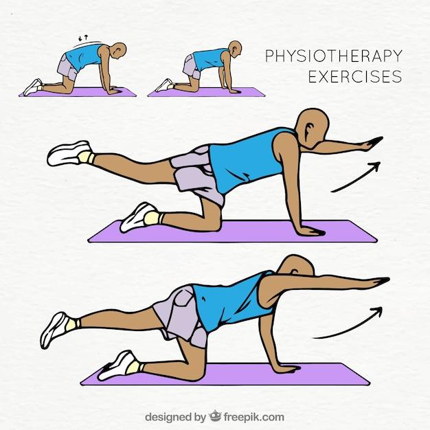 Bunte Sammlung von Physiotherapie Übungen Kostenlose Vektoren