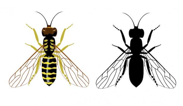 Bunte und schwarze silhouette der wespe auf einem weißen hintergrund. illustration von fliegenden insekten. Premium Vektoren