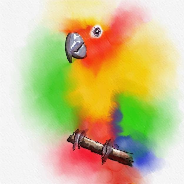 Bunte vogelaquarellmalerei auf vektorkunst. Premium Vektoren