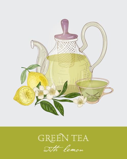Bunte zeichnung der teekanne mit sieb, transparente tasse voll des grünen tees, der frischen blätter und der blumen auf grau Premium Vektoren