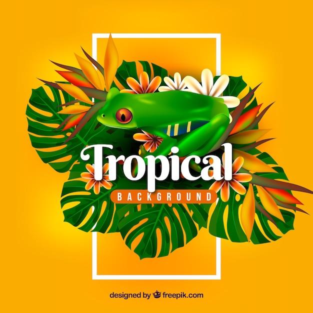 Bunter tropischer hintergrund mit realistischem design Kostenlosen Vektoren