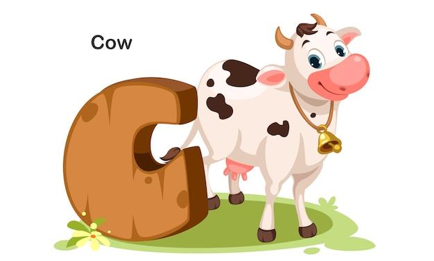 C für kuh Premium Vektoren