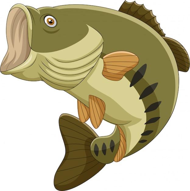 Cartoon bass fisch isoliert Premium Vektoren