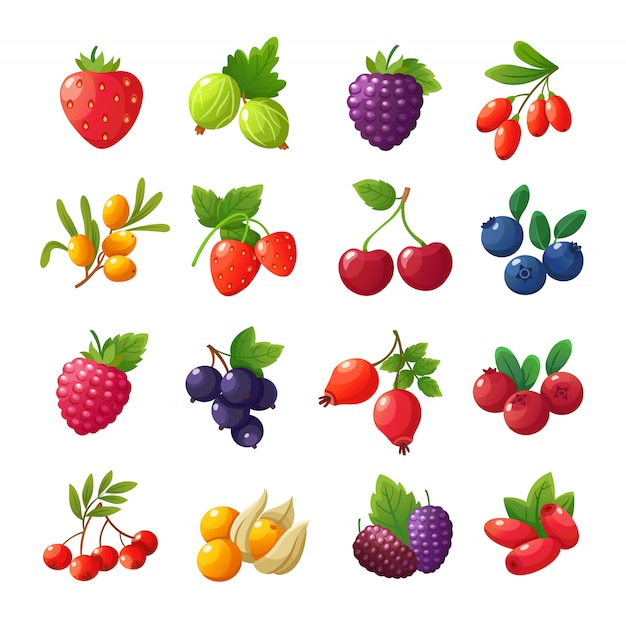 Cartoon beeren. erdbeeren, himbeeren, kirschen, stachelbeeren, blaubeeren, moosbeeren eingestellt lokalisiert auf weiß Premium Vektoren