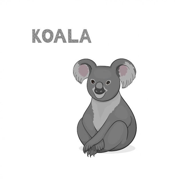 Cartoon coala isoliert auf weißem hintergrund Premium Vektoren