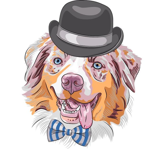 Cartoon hipster hund australian shepherd Premium Vektoren