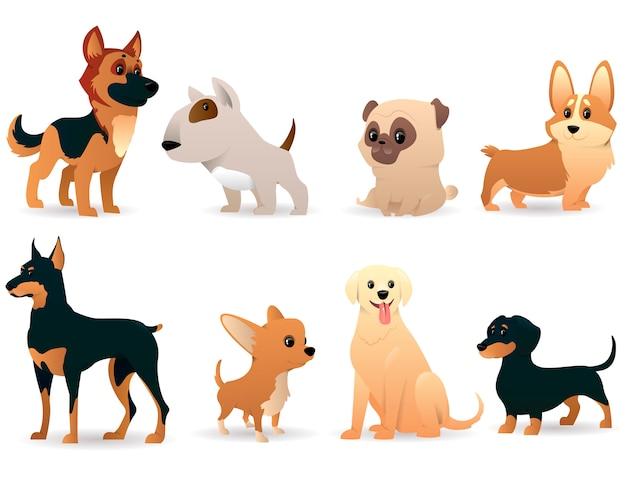 Cartoon-hunde verschiedener rassen Premium Vektoren