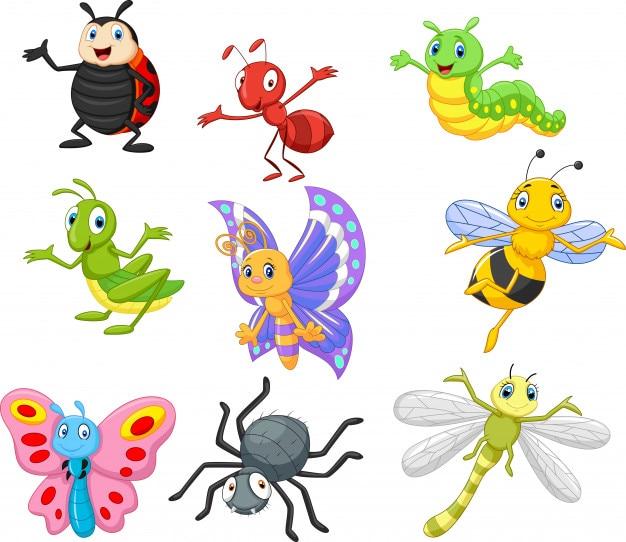 Cartoon insekt Premium Vektoren