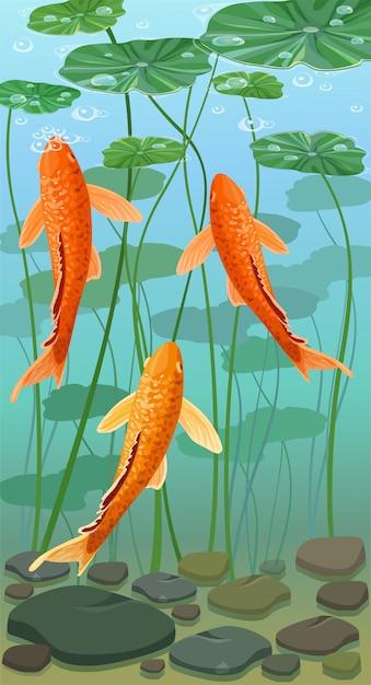 Cartoon karpfen koi fisch. unterwasseransicht. Premium Vektoren