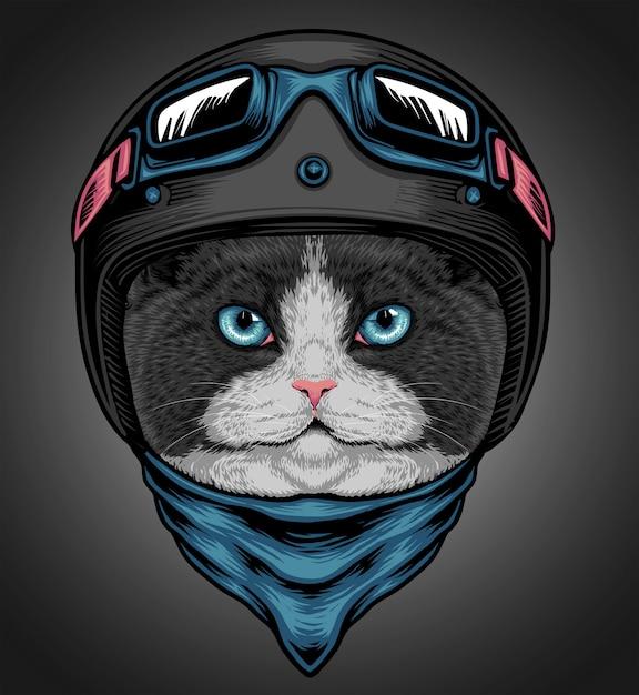 Cat rider Premium Vektoren