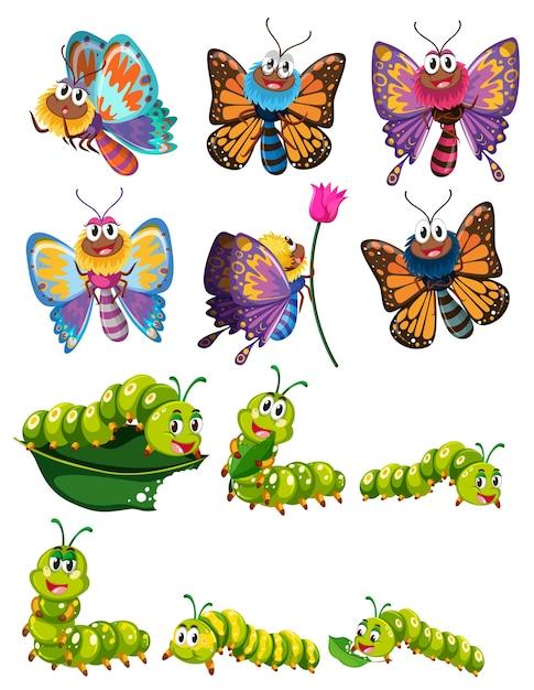 Caterpillars und schmetterlinge mit bunten flügeln illustration Premium Vektoren