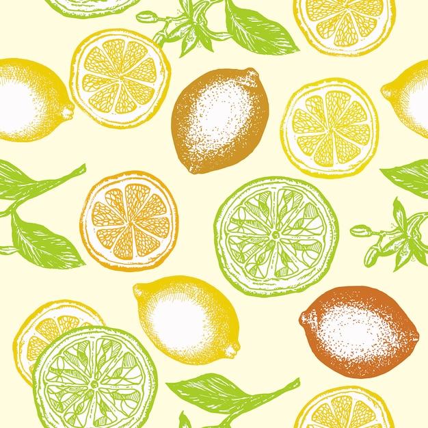 Citrus nahtlose muster Premium Vektoren