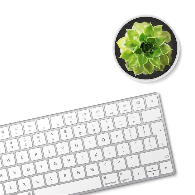 Computertastatur und saftige blume lokalisiert auf weißem hintergrund. Premium Vektoren