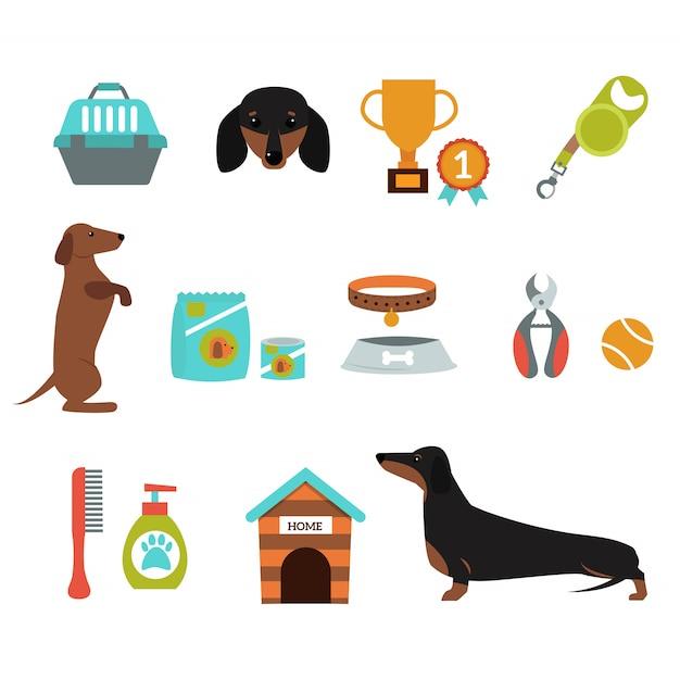 Dachshundhund, der infographic vektordarstellungs-symbolsatz spielt. Premium Vektoren