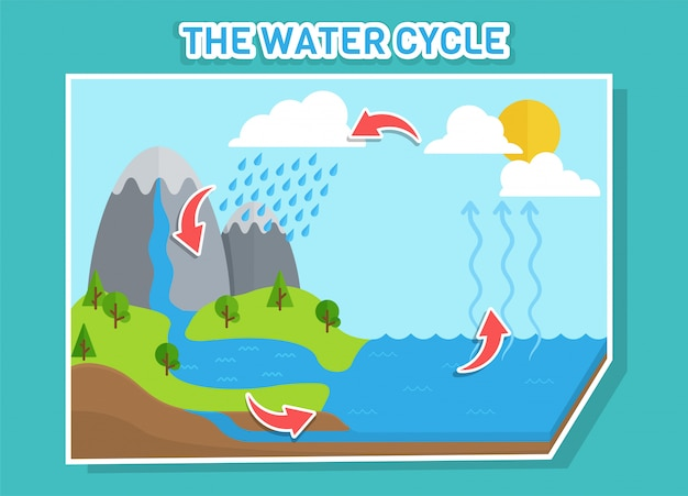 Das wasserkreislaufdiagramm zeigt den wasserkreislauf von wassertropfen zu regentropfen. Premium Vektoren