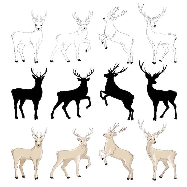 Deer zeichnung Premium Vektoren