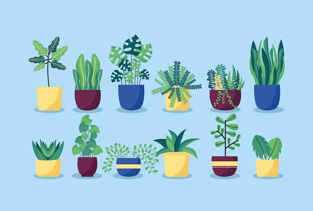 Dekorationspflanzen flache bildgestaltung Kostenlosen Vektoren