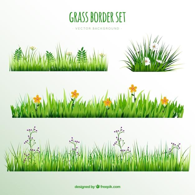 Dekorative gras grenzen mit hübschen blumen Kostenlosen Vektoren