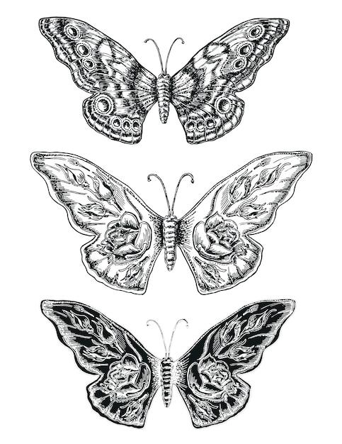 Dekorative skizze schmetterlinge Premium Vektoren