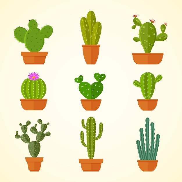 Dekorative zimmerpflanze des kaktus in den flachen ikonen der töpfe. Premium Vektoren