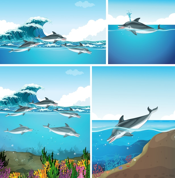 Delfine schwimmen im meer in verschiedenen szenen Kostenlosen Vektoren