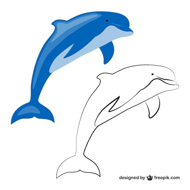 Delphin freie vektorgrafiken Kostenlosen Vektoren