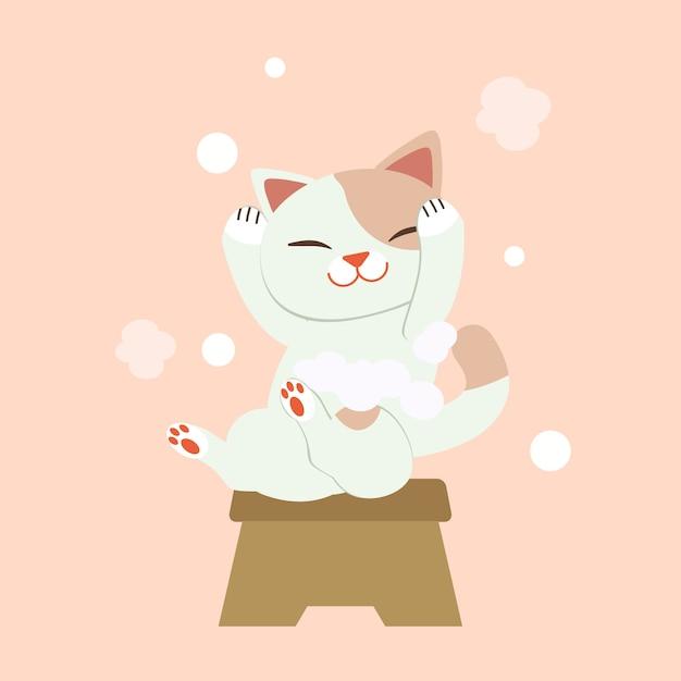 Der charakter der waschenden haare der netten katze. die katze lächelt und es sieht so glücklich aus. die katze, die haare mit vielen blasen wäscht Premium Vektoren