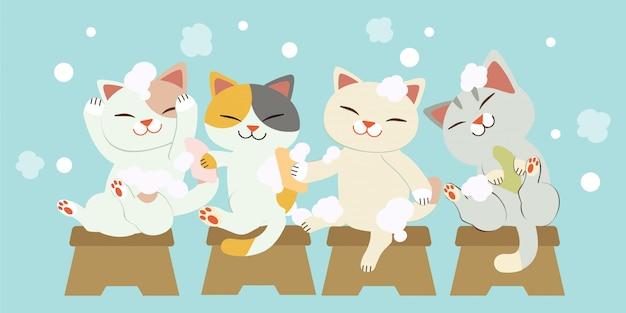 Der charakter von niedlichen katzen, die zusammen haare waschen. die katzen lächeln und es sieht so lustig aus. die katzen waschen haare mit viel luftblasen. Premium Vektoren