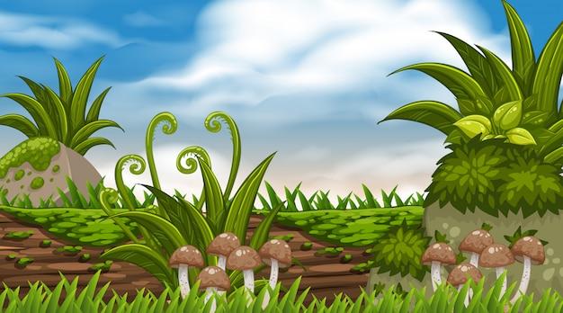 Der landschaft mit pilzen auf dem baumstamm Premium Vektoren
