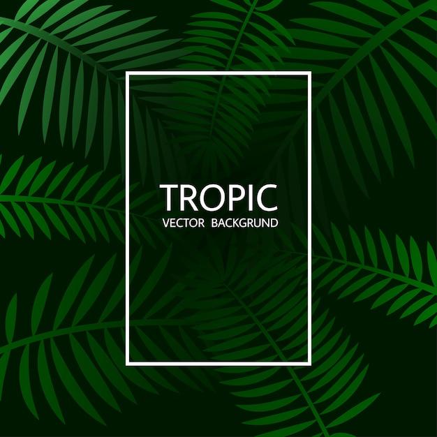 Design mit exotischen tropischen palmblättern und schriftzügen. Premium Vektoren