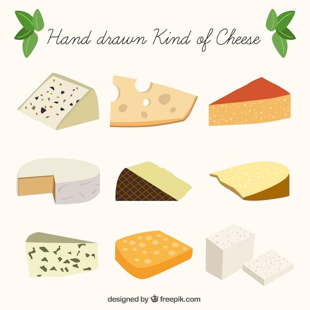 Die Auswahl von leckeren Käse Kostenlose Vektoren