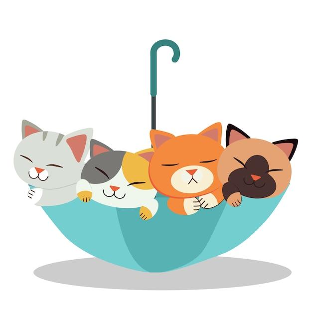 Die gruppe der süßen katze mit dem regenschirm. die katzen sehen glücklich und entspannend aus. der nette regenschirm und die nette katze in der flachen vektorart. Premium Vektoren