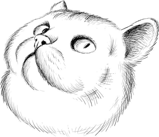 Die logo-katze für tattoo- oder t-shirt-design oder outwear. netter druckartkatzenhintergrund. diese handzeichnung wäre schön auf dem schwarzen stoff oder der leinwand zu machen. Premium Vektoren