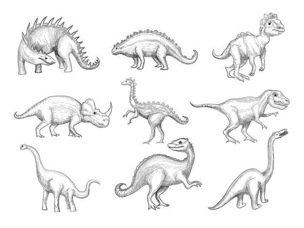 Dinosauriersammlung. aussterben wilde pflanzenfressende verärgerte tiere in paläontologie altert vektorskizze gezeichnete bilder. skizzieren sie pflanzenfressende und prähistorische reptilienillustration Premium Vektoren
