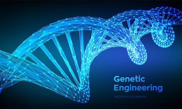 Dna-sequenz. abstrakte polygonale wireframe 3d dna-molekülstrukturmasche. Premium Vektoren
