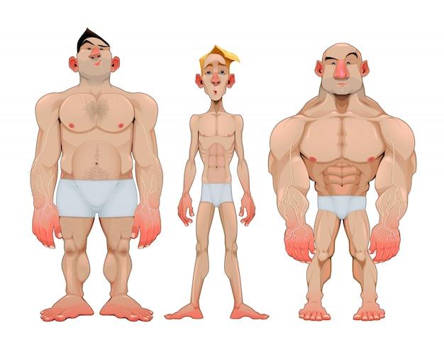 Drei arten von männlichen anatomischen karies Premium Vektoren