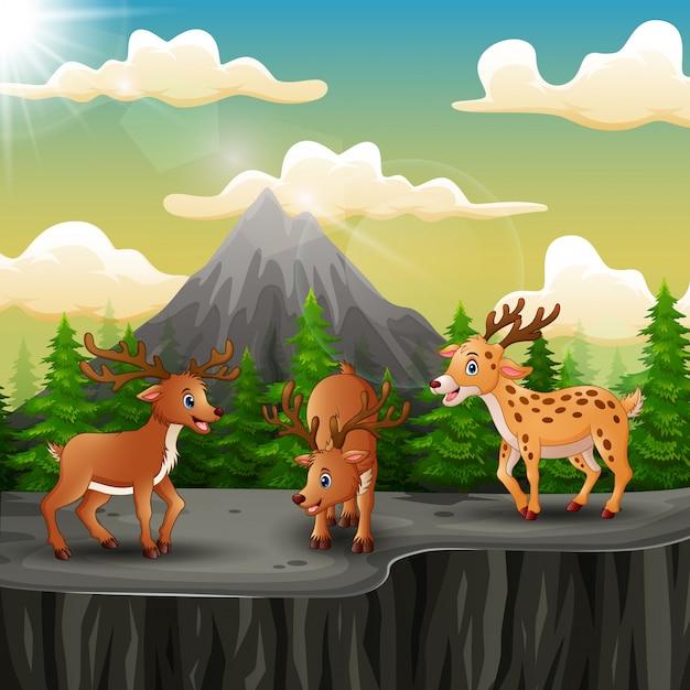 Drei hirschkarikatur auf dem berg eine klippe Premium Vektoren