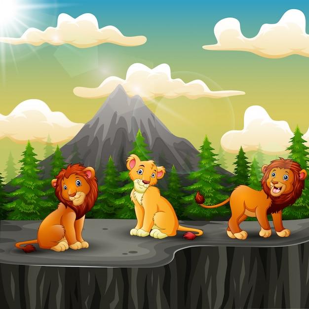 Drei löwekarikatur, die auf dem berg eine klippe genießt Premium Vektoren