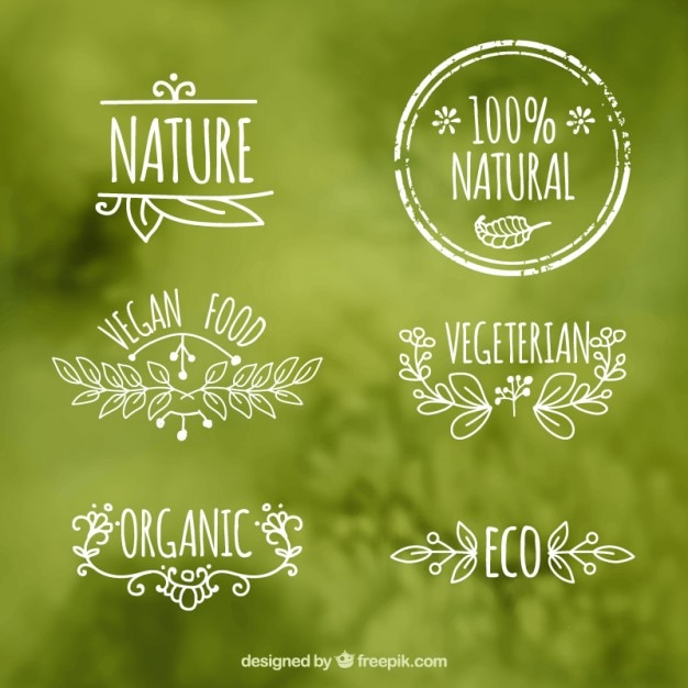 Ecologic etiketten von lebensmitteln Kostenlosen Vektoren