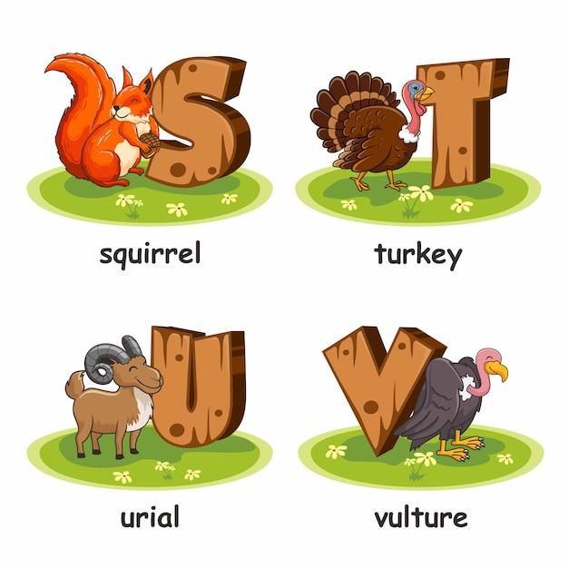 Eichhörnchen türkei urial türkei cartoon holz alphabet tiere Premium Vektoren