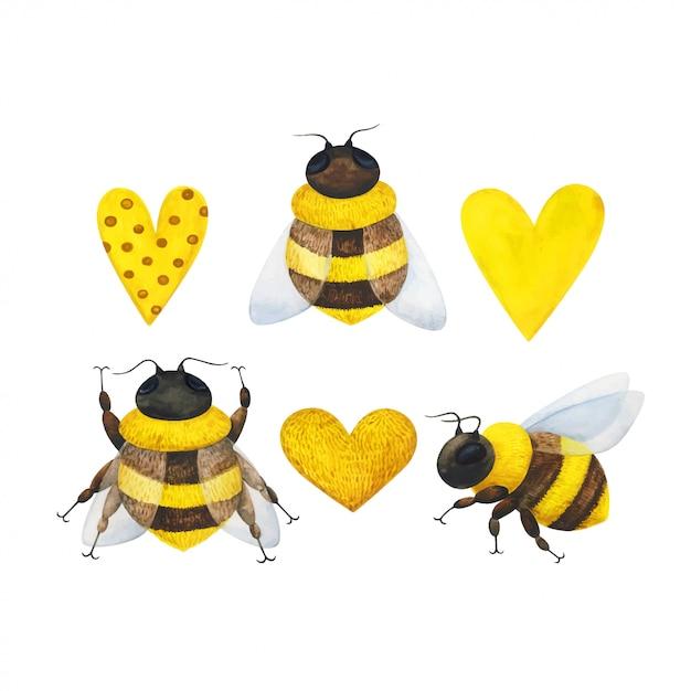 Ein bienenschwarm und ein gelbes herz. satz aquarellillustrationen mit insekten Premium Vektoren